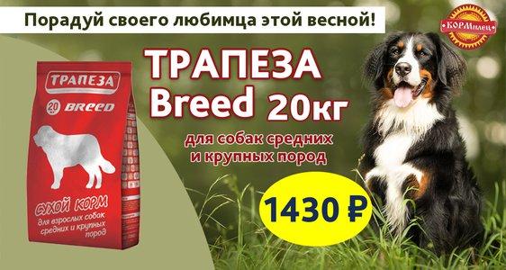 Трапеза Breed по сниженной цене!